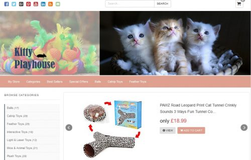 Kitty Playhouse Amazon Affiliate Website